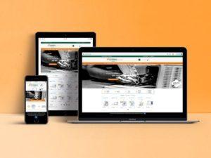 kataskevi site eshop digital marketing Petridis